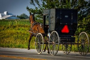 Dutch Amish buggy